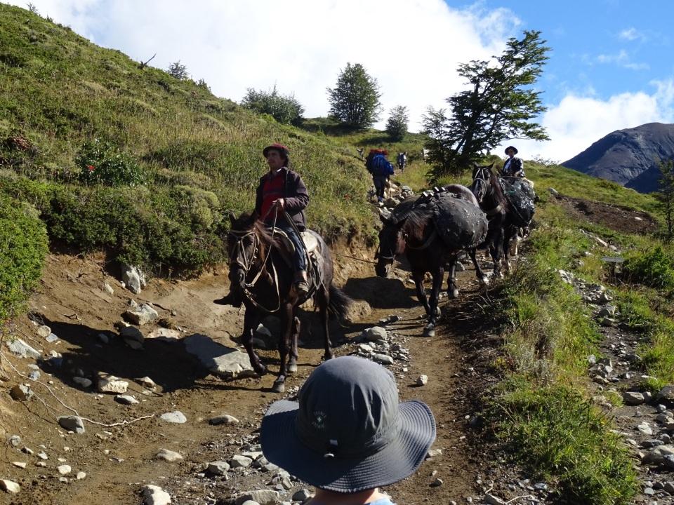 Gaucho's bringing supplies down the trail.